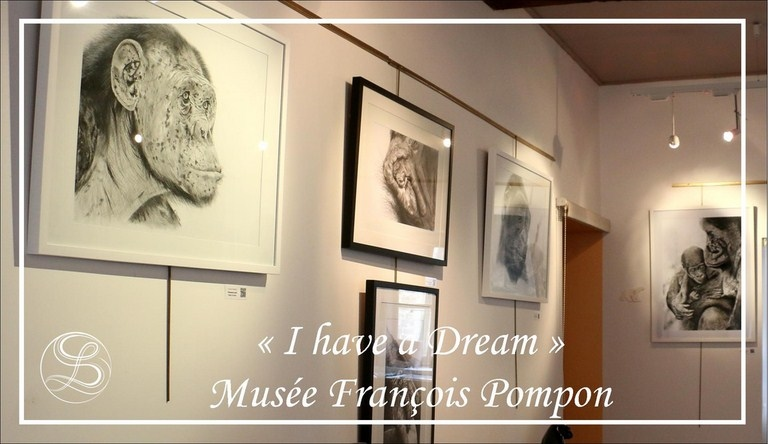 "Exposition ""I have a dream"" avec Laurence Saunois, artiste peintre animalier"